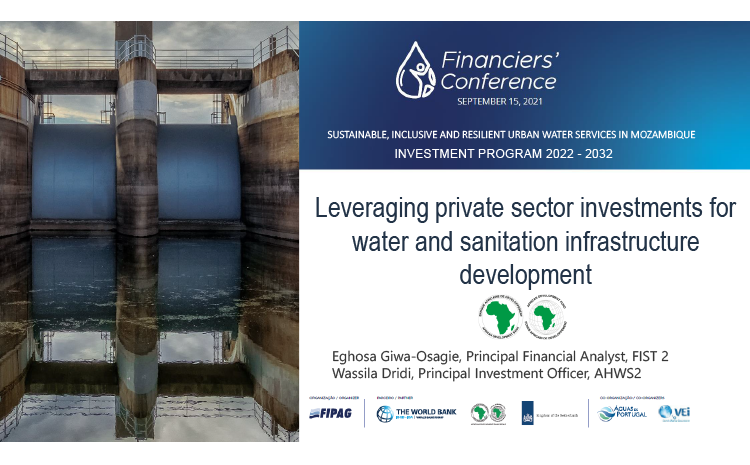 Leveraging Private Sector Investments for Water and Sanitation Infrastructure Development