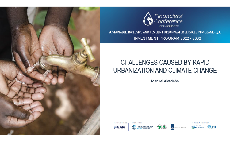 Challenges Caused by Rapid Urbanization and Climate Change